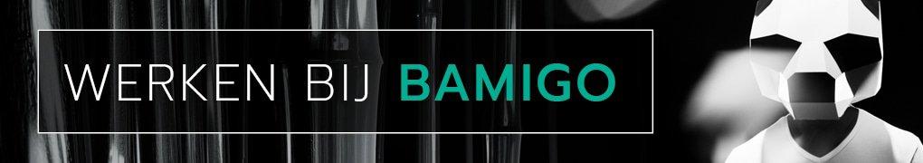 Werken bij Bamigo
